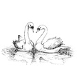 Two swans on lake vector image vector image