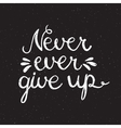 Never ever give up inspiration quotation vector image