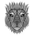 Doodle Lion head vector image