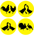 family farm poultry vector image
