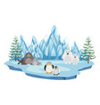 wildlife in the arctic land vector image