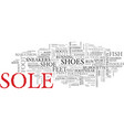 sole word cloud concept vector image