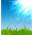 Natural Sunny Background vector image