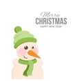 Funny snowman on holiday cards vector image