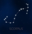 Scorpius constellation vector image