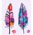 Watercolor feather and drops of paints vector image