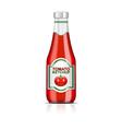 ketchup bottle vector image