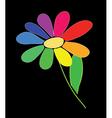 rainbow flower vector image vector image