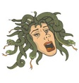 head of medusa vector image
