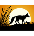 Silhouette of the fox vector image