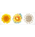 Sunflower different styles drawing icon vector image
