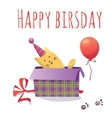 Colorful birthday card with cat box and balloon vector image