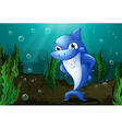 A blue shark under the sea vector image vector image