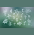 different houseplants icons in line art style vector image