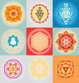 sacred geometry set vector image vector image