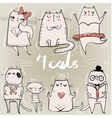 set with cute cats vector image