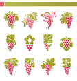 logo template - grape with green leaf vector image
