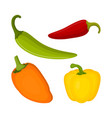 set with different types of peppers vector image