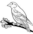 hand drawn sparrow bird animal sketch vector image