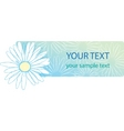 beautiful camomile floral banner vector image