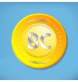 Bit coin icon vector image