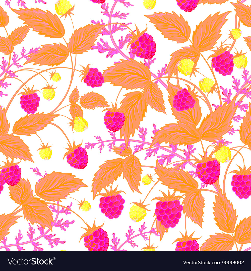 Raspberry pattern doodle seamless pattern vector