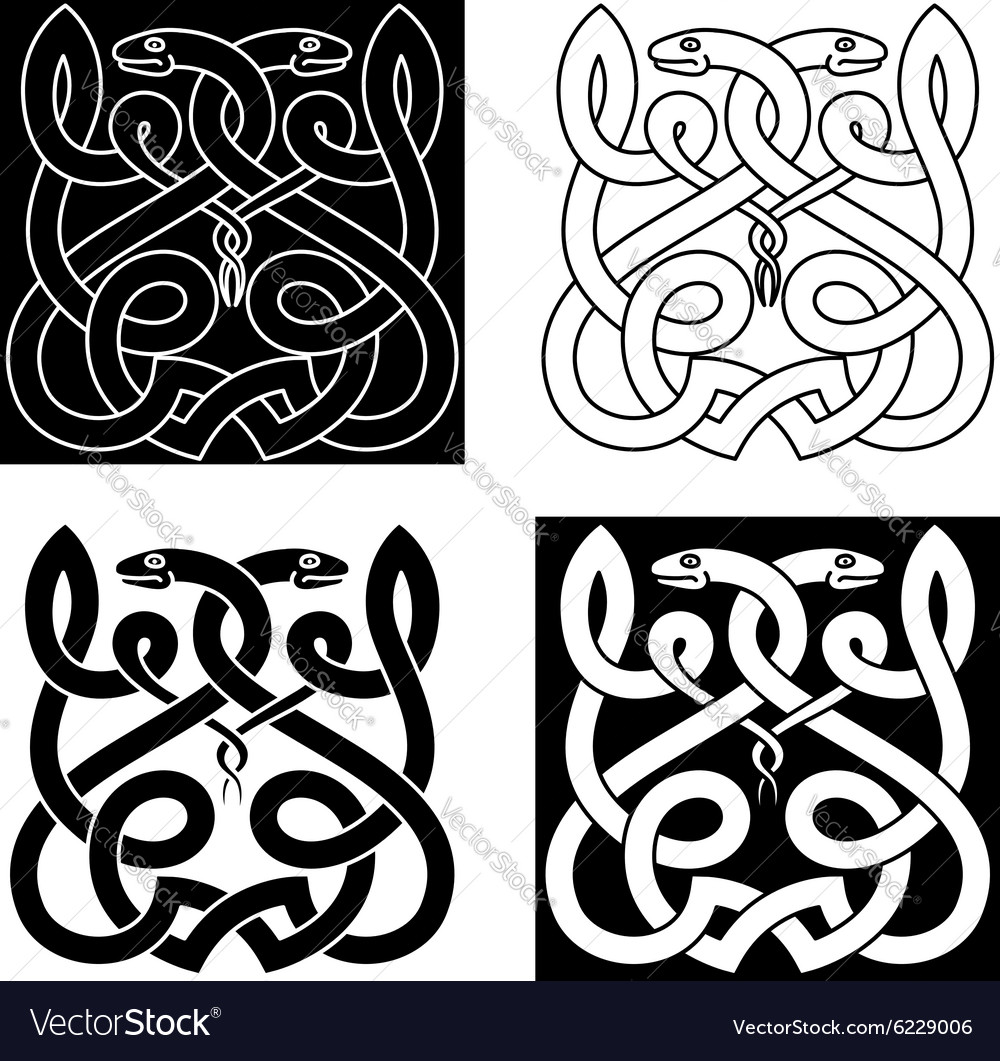 Celtic snakes ornament with tribal elements vector