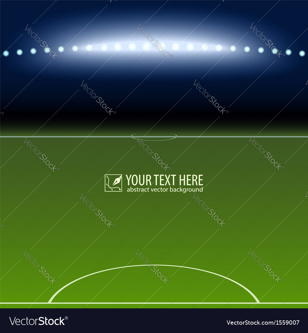 Soccer field with white lines on green vector