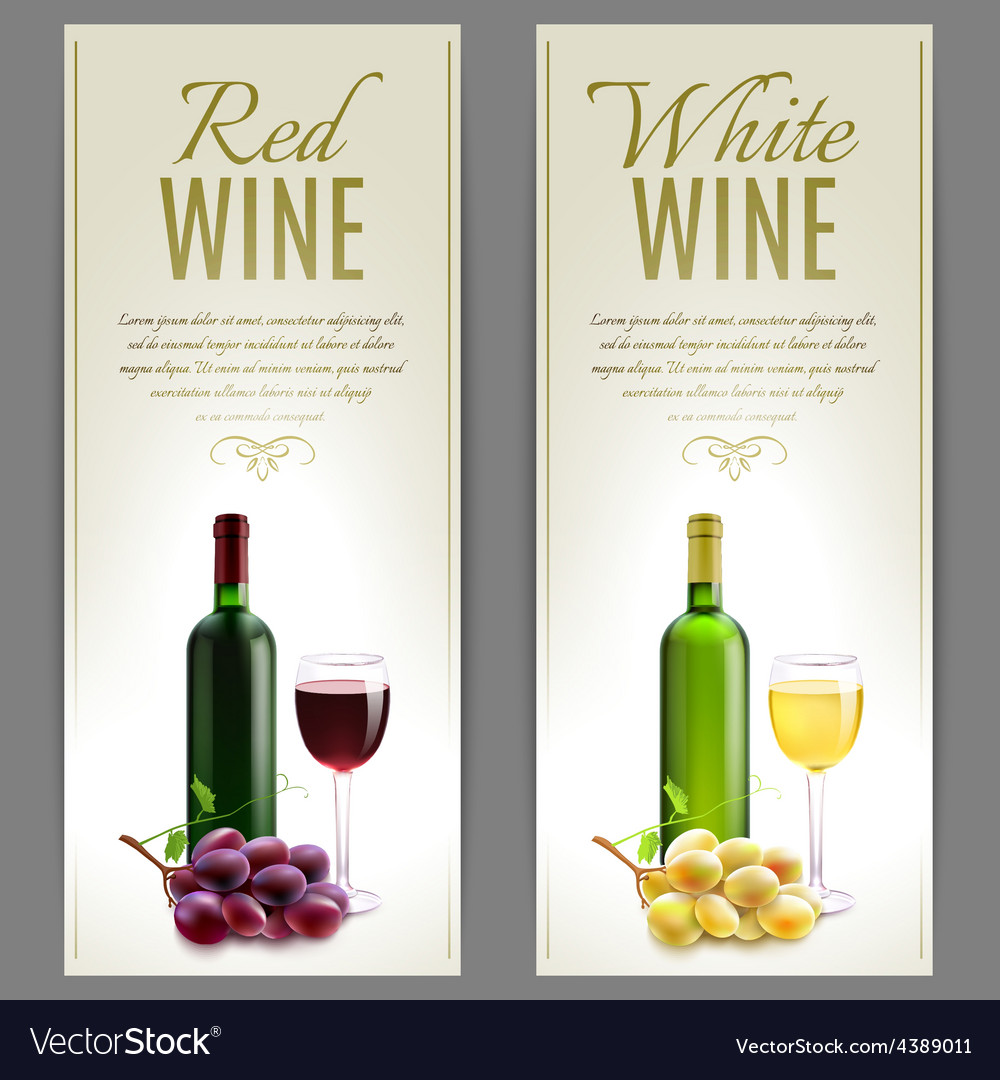 Wine banner set vector