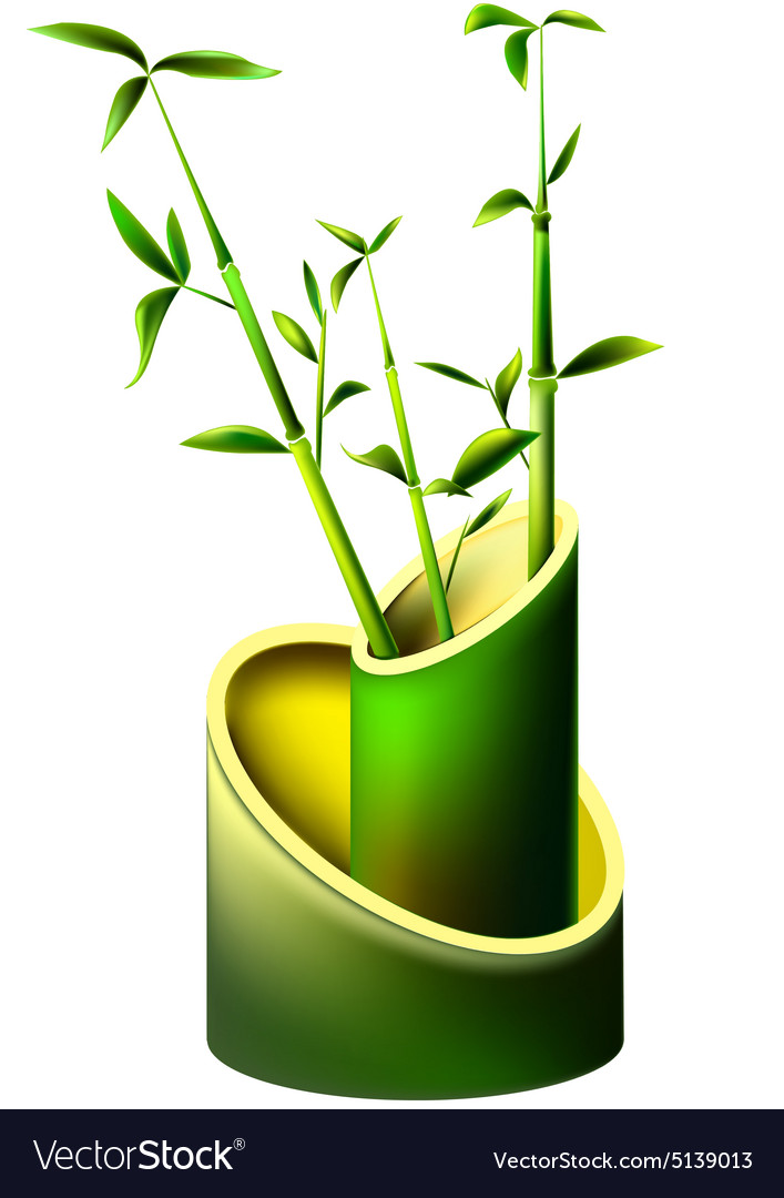 Vase of bamboo with young bamboo shoots vector