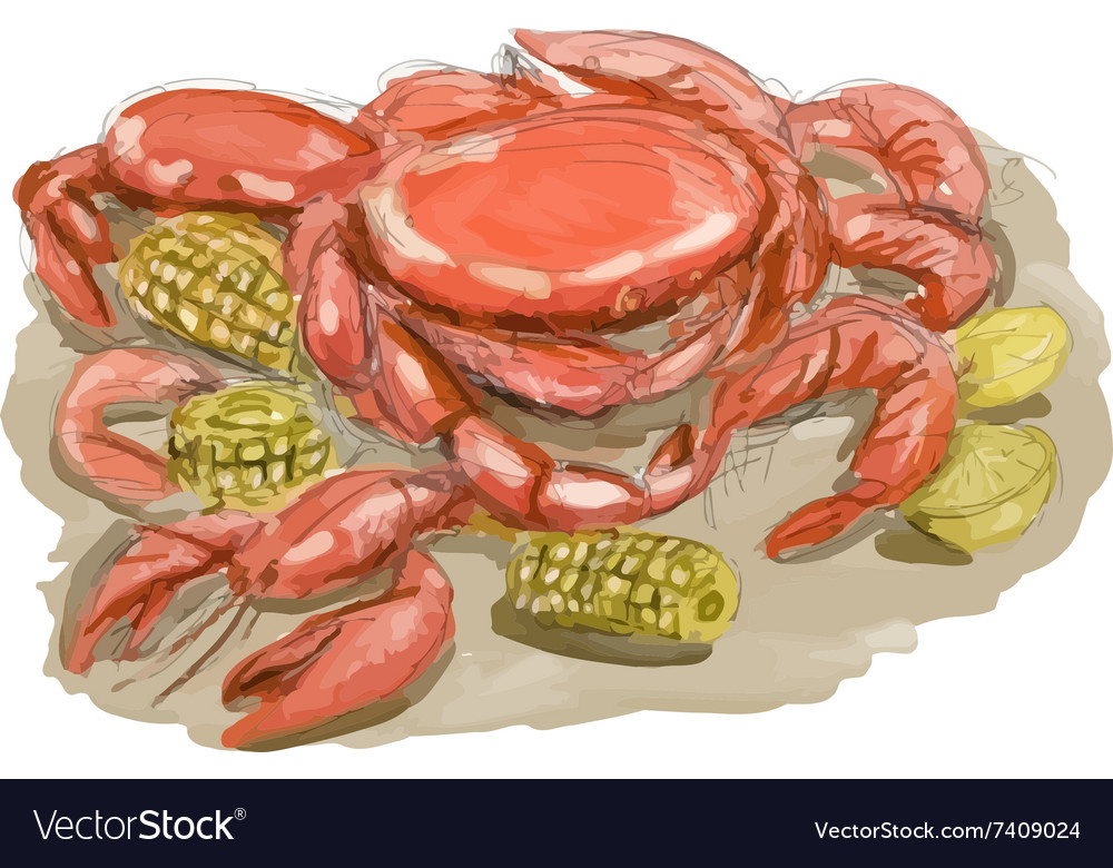 Cajun seafood watercolor vector
