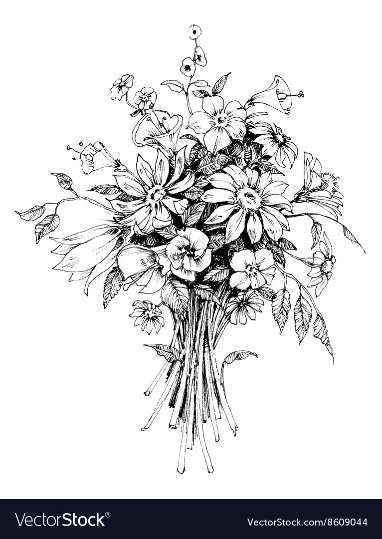 Bunch of flowers bridal bouquet sketch vector