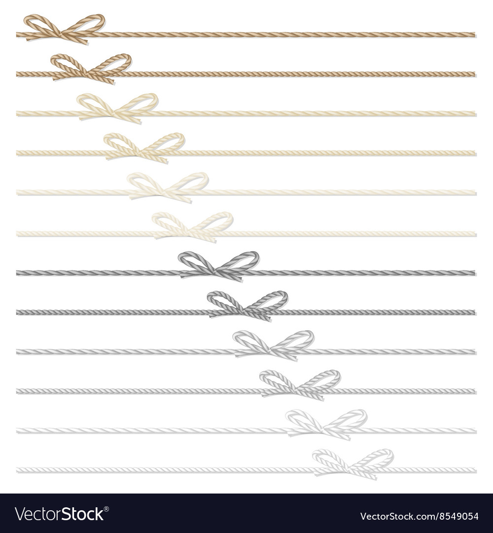 Rope bows and ribbons vector
