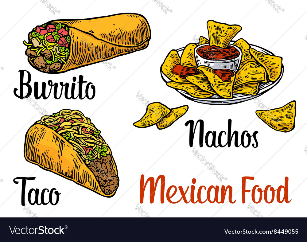 Mexican traditional food set burrito tacos chili vector