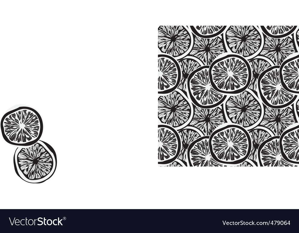 Lemon slices background vector