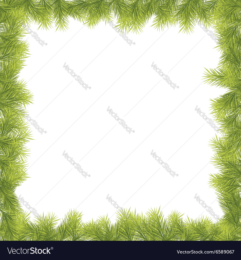 Christmas fir tree border vector