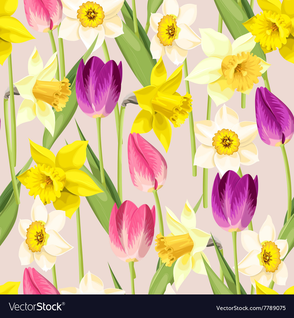 Vintage tulip and daffodil seamless vector