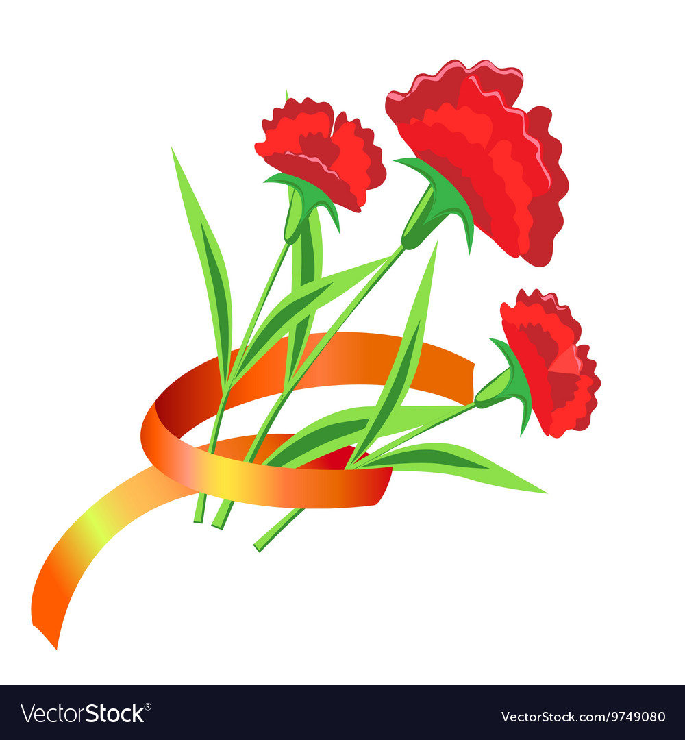 Three red flower with a ribbon painted carnations vector