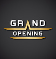 EPS10 grand opening text icon vector image