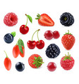 Forest berry Sweet fruit 3d icons set Realistic vector image