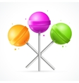 Glossy Round Colorful Lollipops Set vector image