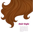 Beautiful brunette hair vector image