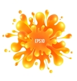 Orange paint splash isolated on white background vector image