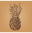 Pinjeapple sketch vector image