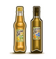 bottles of sesame and flaxseed oil vector image
