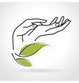 Female Hands Caring for Them vector image vector image
