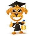 dog school graduation yellow puppy in black robe vector image