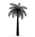palm tree silhouette 03 vector image