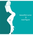 beautiful curve and neat figure vector image