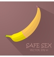 Safe sex with a condom vector image